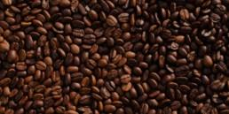 Roasted coffee beans!