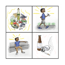 Illustration from a Lifeology course on how to strengthen your immune system, by Gaius Augustus.