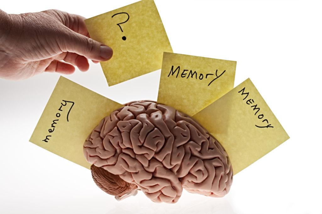 A conceptual image of a brain, memory notes and a hand removing one. Hand shadow left deliberately.PLEASE CLICK HERE FOR MORE BRAINS.